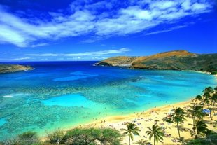 Hawaii's Tourism Industry Sets New Record in Spending and Arrivals for 2013